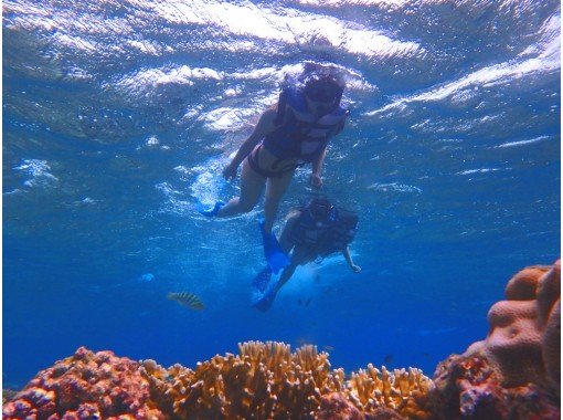 [Okinawa Naha departure] snorkel tour & Marine Sport two points Chibishi Islands (Dolphin course)の紹介画像