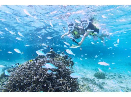 [沖縄宮古島] 3歲起就可以♪浮潛之旅,享受珊瑚和魚類!淋浴間和吹風機♡の紹介画像