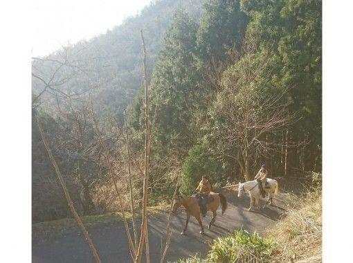 【兵庫・丹波篠山】初心者森林浴外乗+山を登り高さを感じる散歩90分