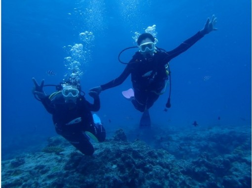 """""""GoTo Travel Coupon Target Store"""" [From Naha, Okinawa] Experience diving & parasailing in the Chibishi Islands (sea turtle course)の紹介画像"""