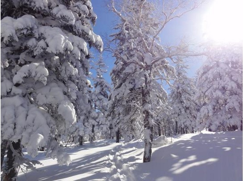 [Hokkaido Tokachi] happy Onsen ♪ snowshoeing experience! Introduction image of (half-day course)