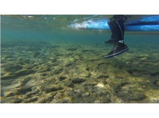 [沖縄·Yanbar / North] 90分鐘課程活動中止中等! !在美麗的海Yanbaru的美麗的初學者衝浪の紹介画像