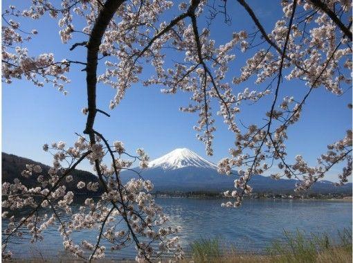 """【優雅な時間を♪】サイクルクルージングで富士の麓の自然を満喫!""""河口湖ポタリングコース"""""""