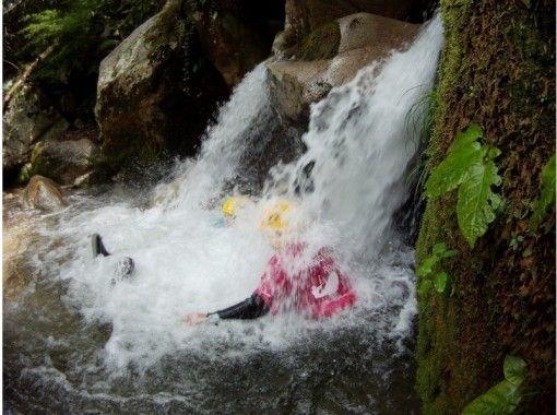 【滋賀県・高島市】自然満喫 八つ淵滝 シャワークライミングの紹介画像
