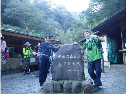 【屋久島・装備レンタル無料】白谷雲水峡~太鼓岩ツアーの紹介画像