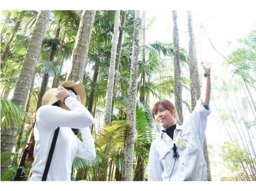 【沖縄市】☆東南植物楽園 割引入園料金☆最大150円割引