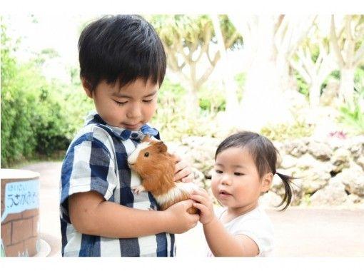 【沖縄市】自然の力を浴びてパワーチャージ!東南植物楽園 入園散策プラン