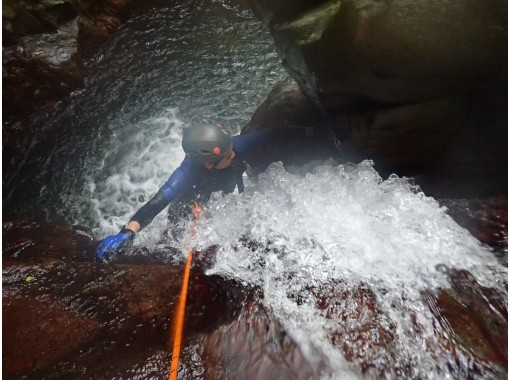 [Thrilling and exhilarating MAX] Private tour with photos and videos ★ Yanbaru Shower Climbingの紹介画像