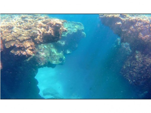 【鹿児島・奄美大島】奄美で一番美しい土盛海岸!【青の洞窟感動シュノーケリング体験】