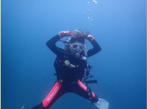 【千葉・館山】体験ダイビングでは物足りない方におすすめのプラン【1日でライセンス取得】