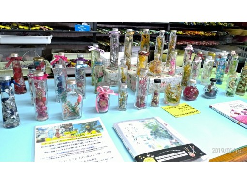 """[Aichi / Nagoya Station 5 minutes] """"Herbarium experience"""" Take one challenge easily! There are 500 kinds of flower materials! On the day reservation is OK!の紹介画像"""