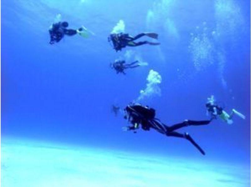 【小田原・伊豆】リフレッシュダイビング(海洋実習コース)の紹介画像