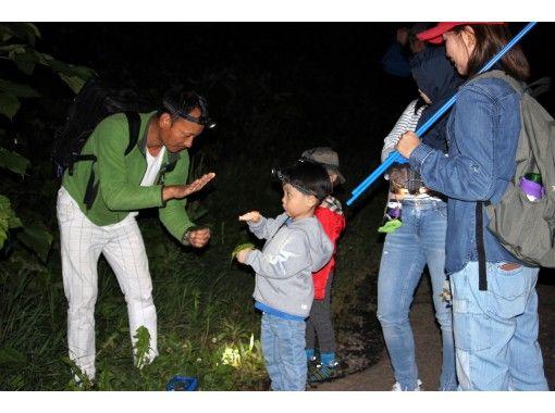 【北海道・ニセコ】夜の森冒険ツアー★ニセコの森の中へ色々な生き物を探しに冒険に出かけよう!