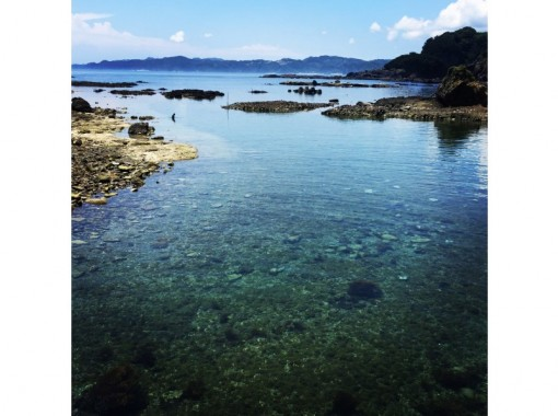 [Izu / Shimoda] Snorkel tour on Ebisu Islandの紹介画像