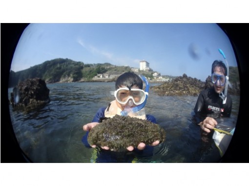 【伊豆・下田】恵比須島でシュノーケルツアーの紹介画像