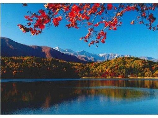 [长野县大町市的独木舟]日落晚餐游轮出生水的信浓大町青木湖の紹介画像