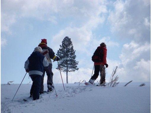 【北海道・富良野】スノーシュートレッキング ~麓郷周辺散策~