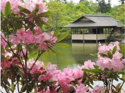 【東京・立川】着物で日本文化体験!国営昭和記念公園の日本庭園観光と日本文化を体験しよう