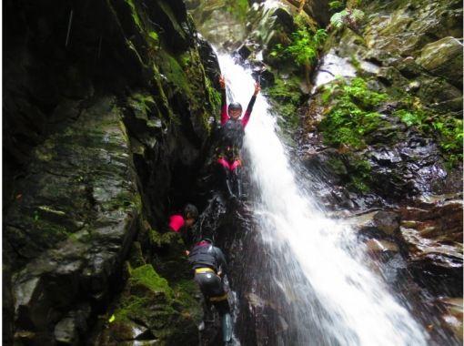 【沖縄・名護市】ずぶぬれ必須!本格的ジャングル冒険コース