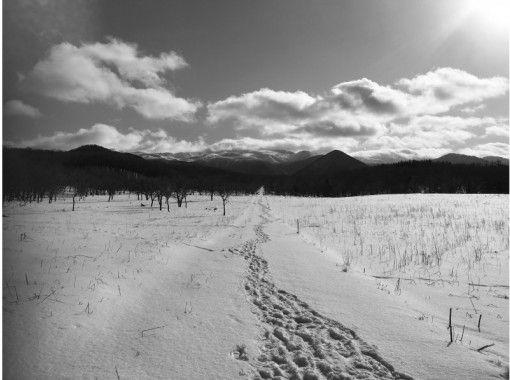 【北海道・知床】知床ウトロ・月明かりの路  冬の星空ナイトツアー【無料送迎付き】