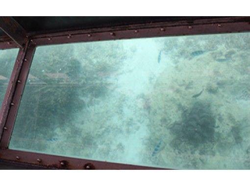 【沖縄・うるま市】海中道路のそばで水中観察 ♪ グラスボートクルージング