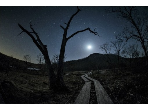 【栃木・那須板室】夜の森をお散歩!ナイトツアー「Night Hiker(ナイトハイカー)」
