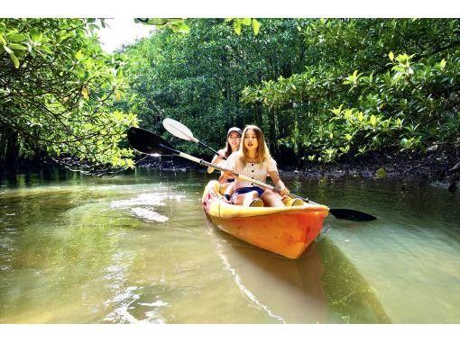 【西表島/1日】充滿偏遠島嶼的魅力!由布島觀光和世界遺產,紅樹林SU或獨木舟從西表島選擇[照片數據免費]の紹介画像