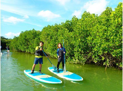 【石垣島/1天】河海一整天!天然紀念物紅樹林蘇泊爾獨木舟和藍洞浮潛 [照片數據免費]の紹介画像