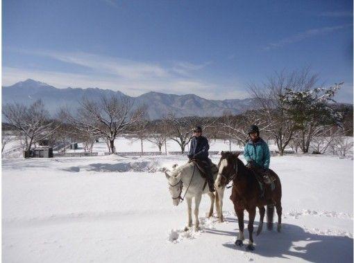 【山梨・八ヶ岳】充実の乗馬日帰りプラン  馬場レッスン+森林浴トレッキング