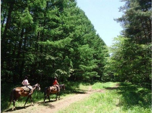 【山梨・八ヶ岳】充実の乗馬日帰りプラン(お食事券付き)馬場レッスン+森林浴トレッキング