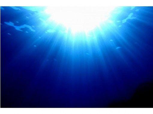 ♪熱海で体験ダイビング♪ 約1.5時間 初心者OK! 人気の熱海で体験ダイビング!