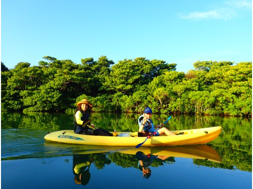 [Okinawa / Ishigaki Island] Reservation is OK until 12:00 on the day! Safe and secure small group ☆ Mangrove kayak jungle exploration ☆ 2 hour plan with tidal flat walk ♪ Photo giftの紹介画像
