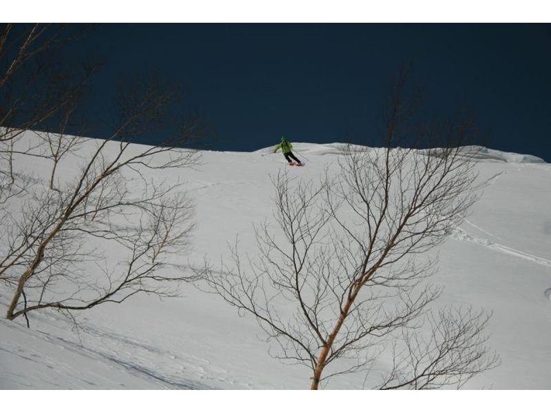 【新潟・苗場】マジックボード(スノーボード)レッスン(半日プラン)の紹介画像