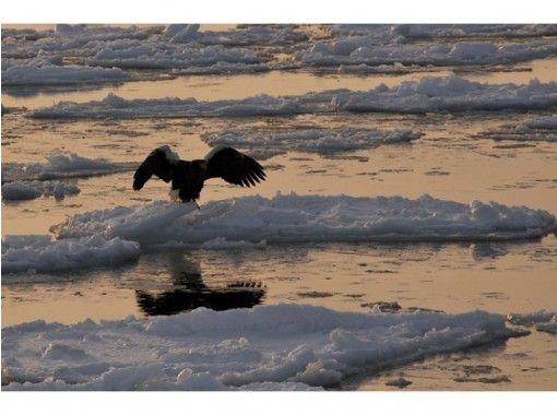 【 北海道 ·網走】【 一 】野外的白色藝術只在冬季鄂霍次克經驗冰體驗冰破景觀破冰船Oiraの紹介画像