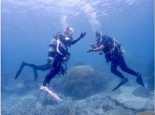 【初めての方に!まずはこれ!】1.5日でお気軽ダイビングライセンス取得プラン(最大潜水深度12m)