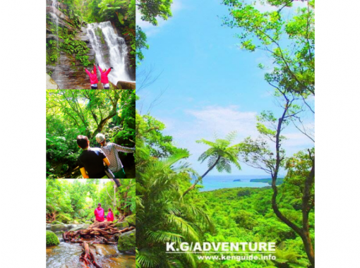 【石垣・西表島】マングローブカヌー&シャワートレッキング・秘境ゲータの滝巡り【ツアー写真無料プレゼン