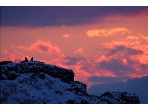 【北海道・知床】世界自然遺産~知床オオワシ・オジロワシの観察(2時間コース・車移動)