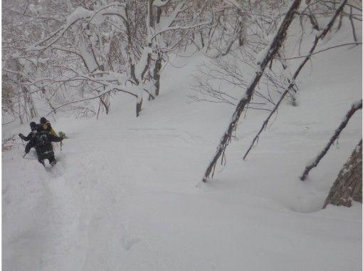 Oze and Osamu Hot spring Snowshoe Tourの紹介画像