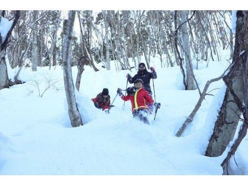 【初夢フェア実施中】群馬みなかみの森で雪遊び!スノートレッキング半日ツアー