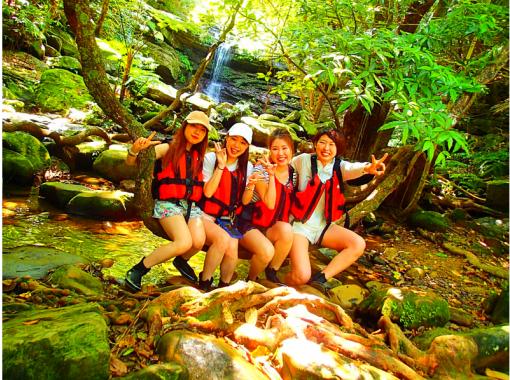 [Iriomote Island] To popular Yubu Island sightseeing a27. Mangrove canoe x jungle trekking Unexplored power spot tour & Yubu Island sightseeing [Tour photo data free]の紹介画像