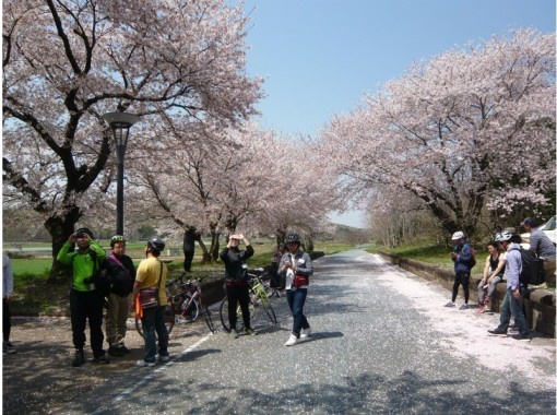 【Ibaraki・Tsukuba】 Tsukuba Countryside Cycling Tour With A Local Guide!の紹介画像