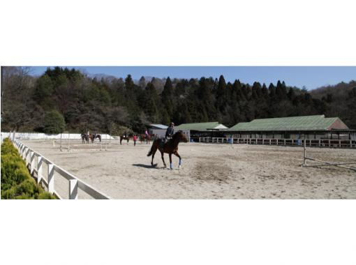【奈良・天理】初めてでも安心!マンツーマンで乗馬体験