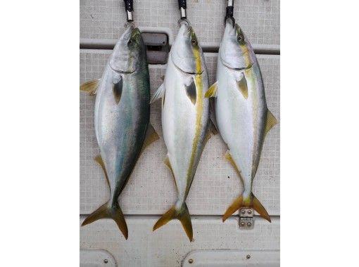 【東京・羽田】船長オススメ チャーター便!兎に角釣りたい方必見!!釣った魚を調理してくれるお店もご紹介可!の紹介画像
