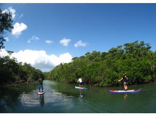 【沖縄・石垣島】マングローブを水上散歩!ジャングルリバーSUPツアー