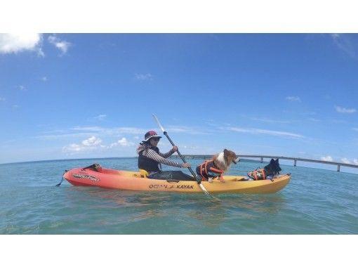 【沖縄・宮古島】カヤックで行く幻の島(ゆにの浜)上陸ツアーの紹介画像