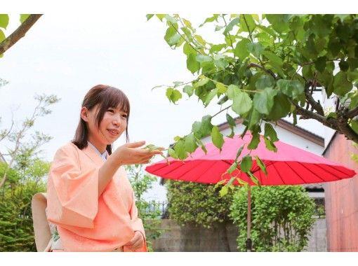 【岡山・勝央町】お気軽・茶道体験教室★JR勝間田駅から徒歩7分