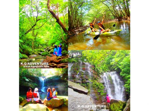 【西表島】マングローブカヌー&シャワートレッキング・秘境ゲータの滝巡り【ツアー写真データ無料】