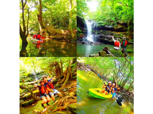 【西表島】マングローブSUP・カヌー&シャワートレッキング・秘境ゲータ滝巡り【ツアー写真データ無料】