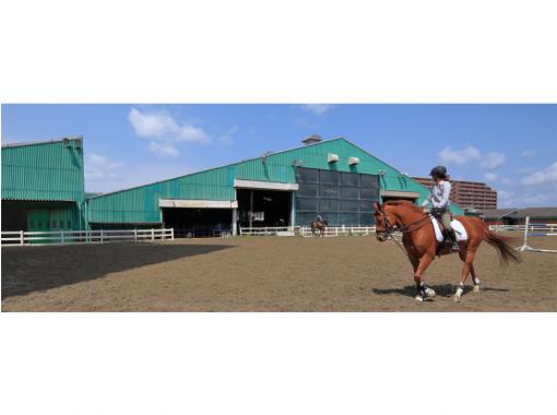 【福岡・西戸崎】初めてでも安心!マンツーマンで乗馬体験・駅から徒歩4分!