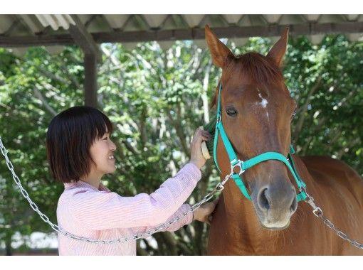 【群馬・高崎】初めてでも安心!マンツーマンで乗馬体験